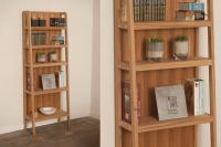 Escalier Shelving Unit